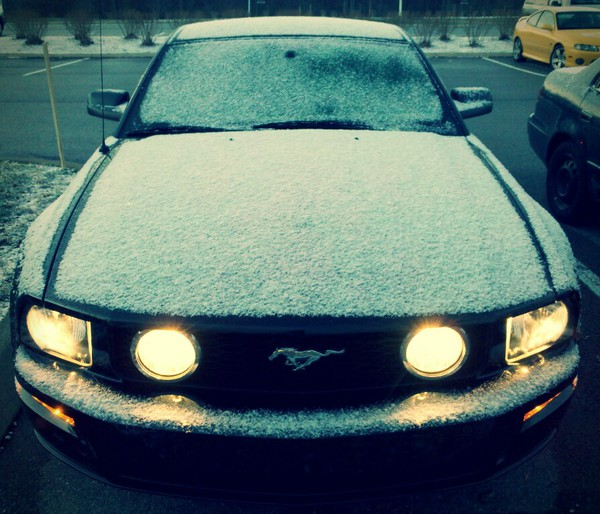 My car in white.  Mustang in snow.